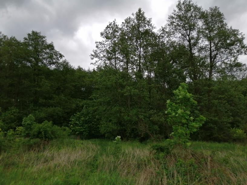 Pozemky Vrbice